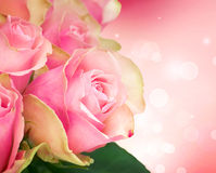 Rosen-Blumen-Kunst-Auslegung Lizenzfreies Stockfoto