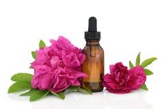 Rosen-Blumen-Wesentliches stockfotos
