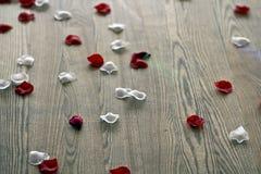 Rosen-Blumenblätter 2 lizenzfreie stockbilder