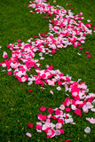 Rosen-Blumenblätter auf Gras Stockbild