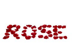 Rosen-Blumenblätter bilden rosafarben lizenzfreie stockfotografie