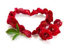 Rosen-Blumenblätter in einer Form eines Inneren Stockfoto