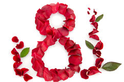 Rosen-Blumenblätter in einer Form von acht Lizenzfreie Stockfotos