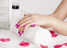 Rosen-Blumenblätter um die schönen Hände Lizenzfreies Stockbild