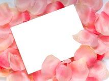 Rosen-Blumenblatt Notecard Stockbild
