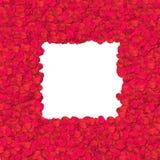 Rosen-Blumenblatt - Rand Stockfoto