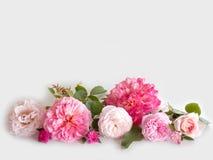 Rosen-Blumenblumenstrauß Stockbild