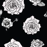 Rosen-Blumensatz der blühender Pflanze Garten stieg lokalisierte Ikone der weißen Blüte, Blumenblätter stock abbildung