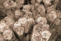 Rosen-Blumensträuße für Verkauf im Sepia Stockbilder