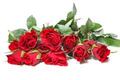 Rosen-Blumenstrauß Stockbilder
