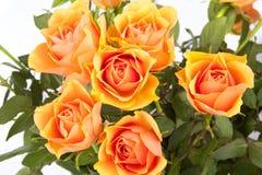Rosen-Blumenstrauß Lizenzfreie Stockfotografie