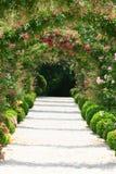 Rosen-Bogen im Garten Lizenzfreie Stockfotos