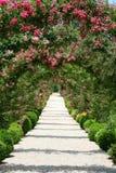 Rosen-Bogen im Garten Stockfoto
