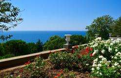 Rosen gegen das Meer Stockfotos