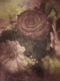 Rosen-, Gerbera- und Mimosenblumen, Weinlesegraphikhintergrund Lizenzfreie Stockfotografie