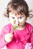 Rosen-Geruch Lizenzfreies Stockfoto