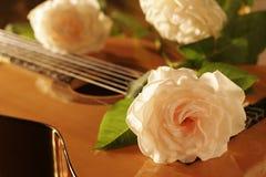 Rosen-Gitarre Stockfotos