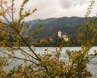 Rosen-Hüfte und Kirche von verlaufenem See. Stockfoto