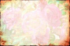 Rosen-Hintergrund lizenzfreie stockbilder