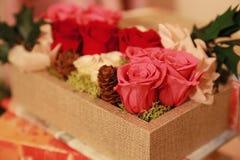 Rosen i asken Arkivfoton
