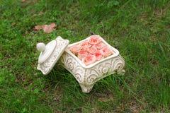 Rosen im Kasten auf dem Gras Stockbild