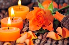 Rosen-Kerzeleuchte Stockbild