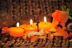 Rosen-Kerzeleuchte Lizenzfreie Stockfotografie