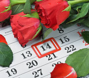 Rosen legen auf den Kalender mit dem Datum des 14. Februar Valentin Lizenzfreie Stockfotos