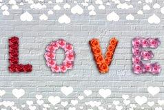 Rosen-Liebe Lizenzfreies Stockbild