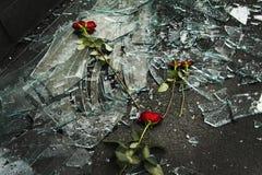 Rosen oben auf unterbrochene Fenster Stockfotografie