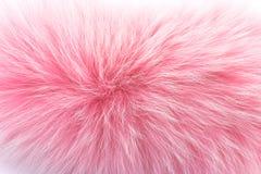 Rosen-Pelz auf Weiß Stockfotografie