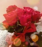 Rosen redbow glückliche Lächelnliebe Lizenzfreie Stockbilder