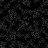 Rosen-Schattenbild in weiße Hand gezeichnetem Muster auf schwarzem Hintergrund Stockfoto