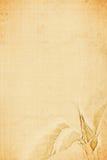 Rosen-Segeltuch stockbilder