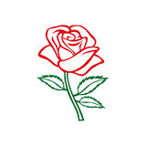 Rosen-Skizze Rosen-Motiv Blumengestaltungselemente Auch im corel abgehobenen Betrag Elegantes Blumenentwurfsdesign Graues Symbol  Lizenzfreie Stockfotografie