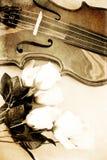 Rosen und eine Violine Stockfotografie