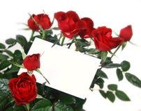 Rosen und Geschenkkarte lizenzfreie stockbilder