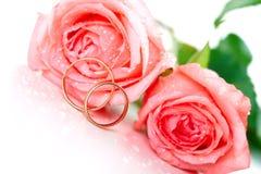 Rosen und Hochzeitsringe Stockbild