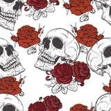 Rosen und Schädel lizenzfreie abbildung
