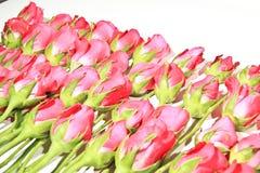 Rosen von Romance Stockfotos