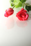 Rosen von Romance Lizenzfreie Stockfotos