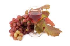 Rosen-Wein Lizenzfreie Stockfotos
