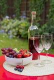 Rosen-Wein mit Sommerfrüchten auf Gartentabelle Lizenzfreie Stockbilder