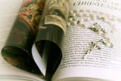 Rosenbeet auf Buch Stockfoto
