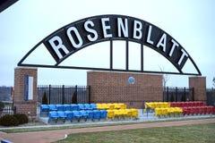 Rosenblatt - högskolavärldsserie Royaltyfri Foto