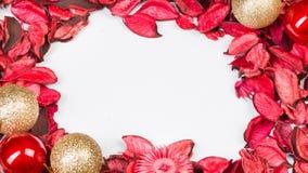 Rosenblumenblätter auf Weiß lokalisiertem Hintergrund Lieben Sie Schablone für Valentinsgrußtagesrosablumen herum Nichts herein i Lizenzfreies Stockfoto