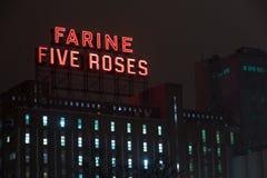 Rosenerrichten Farine fünf Stockfotografie