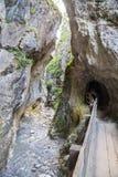 Rosengarten gorge Stock Images