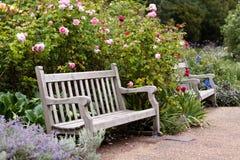 Rosengarten im Park mit hölzerner Bank Lizenzfreies Stockfoto