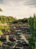 Rosengartenpark mit dem k?niglichen Palast von Madrid stockbilder